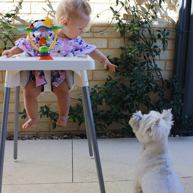 High-Chair-Spinning-Toy-3